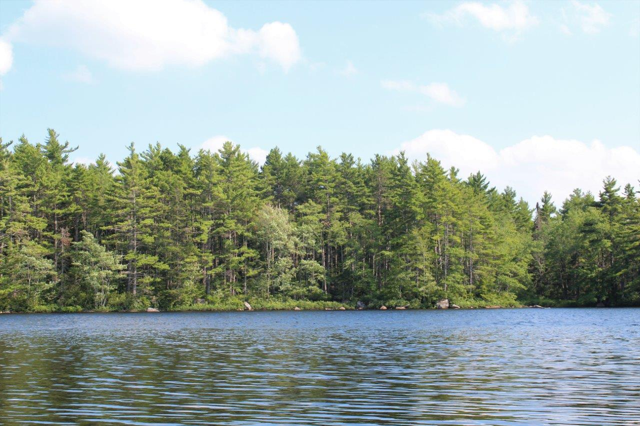 Water Frontage Land For Sale On Waterloo Lake In Nova Scotia