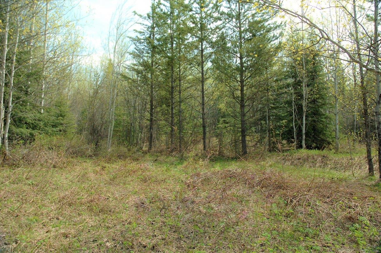 Land For Sale In Central British Columbia Dignam Land